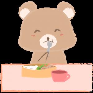 お弁当を食べる子クマ