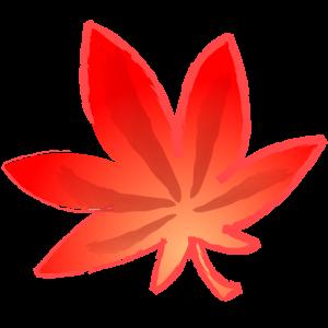 橙の紅葉(モミジ)