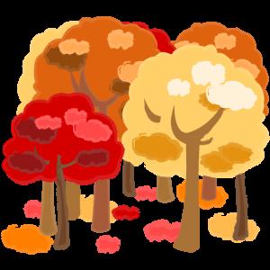 紅葉した森林