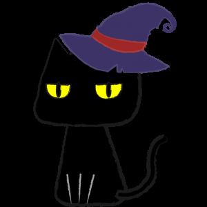 帽子を被った黒猫