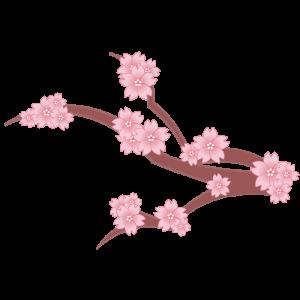 桜の枝(横)