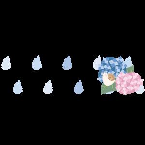 雨と紫陽花ライン