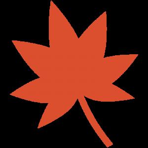 紅葉(もみじ)の葉