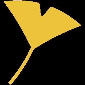 銀杏(いちょう)の葉
