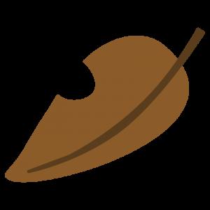 茶色い落ち葉(枯れ葉)