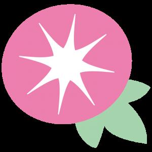 ピンクの朝顔(アサガオ)