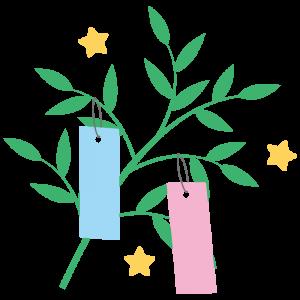 七夕飾り(笹の葉に短冊)