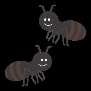 アリ(蟻)