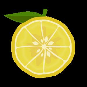 柚子の半分